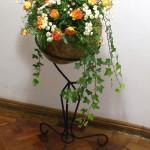 Calabash Flowers