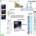 Pond Planning